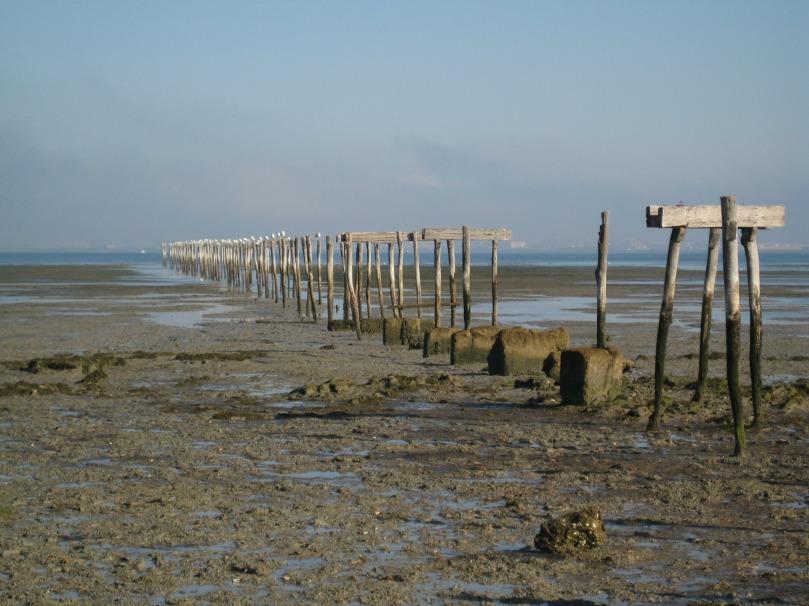 Imagen de la playa de La Casería