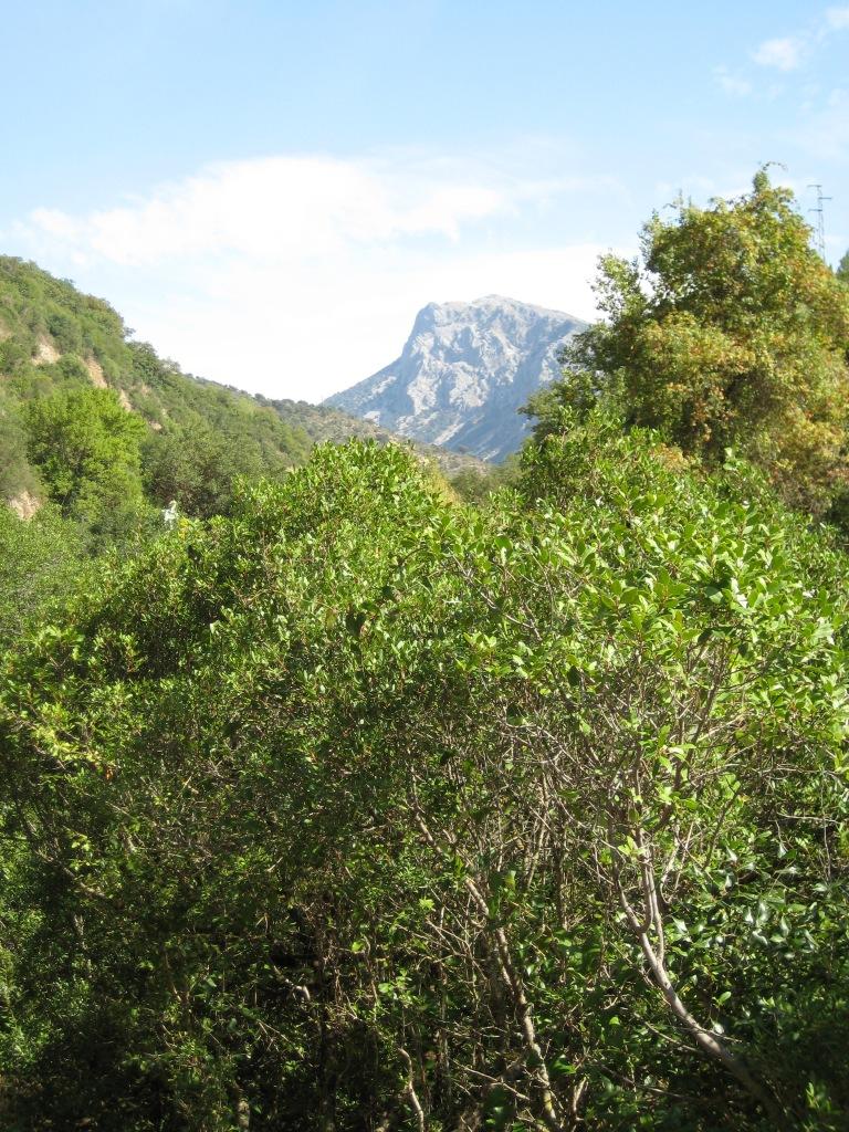 Imagen de la Sierra de Grazalema