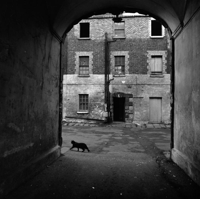 Imagen de un suburbio de Dublín