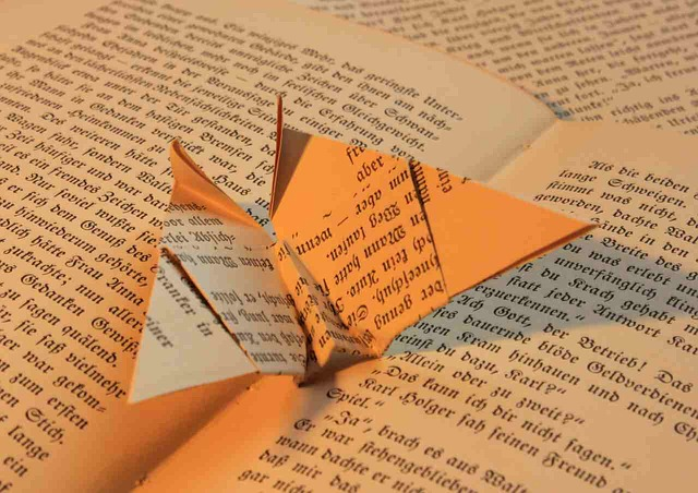 Image of book origami
