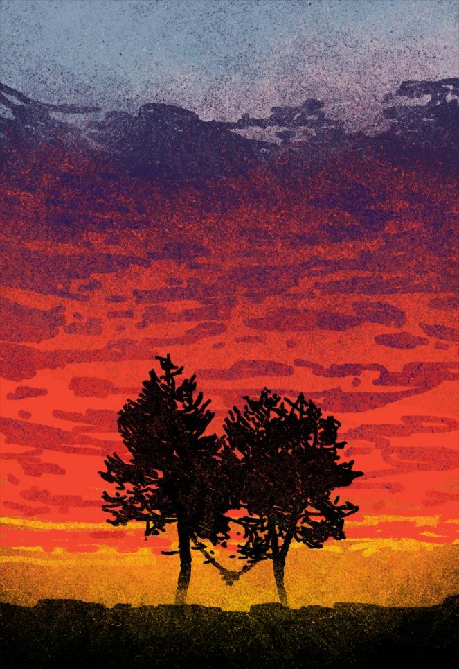 Imagen de árboles en el crepúsculo